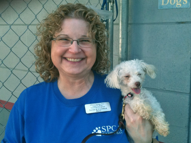 Me at SPCA Feb 2011
